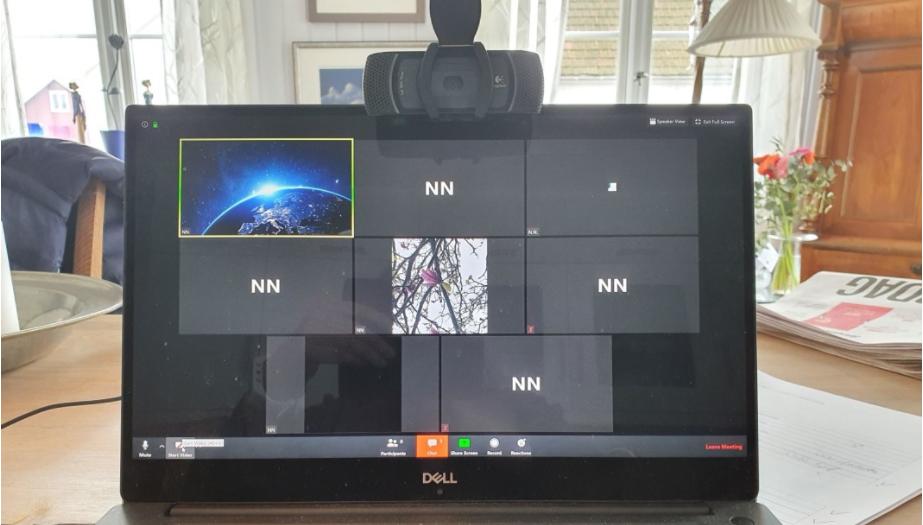 Bilde av skjerm med Zoom og svarte skjermer